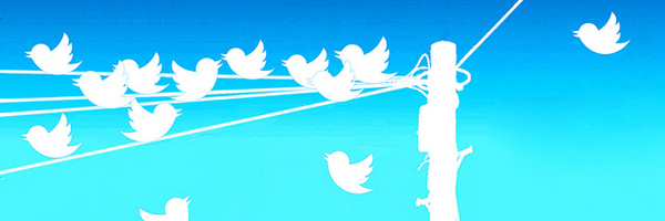Richiedere l'archivio dei tweet in pochi semplici step